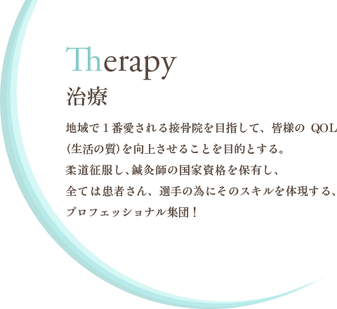 Therapy -治療-